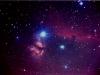Nebulosa cap de cavall