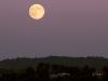 Super Lluna dia 10/8/2014